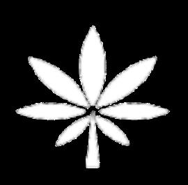Duber Medical Logo Mobile